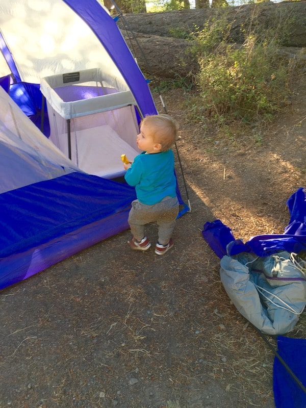 orcas setting up tent