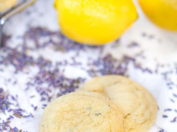 Lavender Lemon Sugar Cookies
