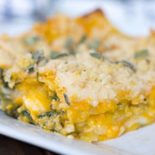 Butternut Squash Lasagna (Lactose Free and Vegan!)