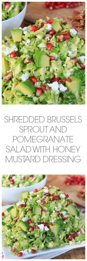 Shredded Brussels Sprout Pomegranate Salad with Honey Mustard Dressing - Super Long Collage with Text Overlay