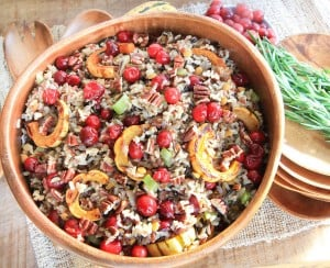 Cranberry and Squash Wild Rice Salad