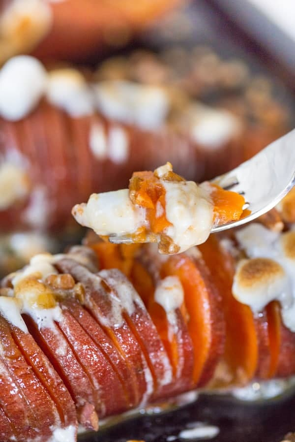 Hasselback Sweet Potato Casserole - a Fork Full of the Delicious Meal