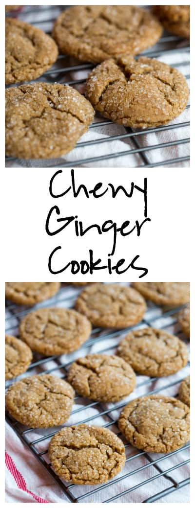 Chewy Ginger Cookies super long collage with text overlay