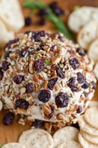 Cranberry Pecan Holiday Cheese Ball
