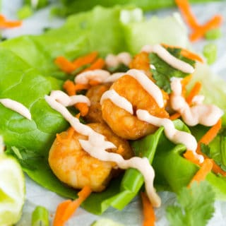 Thai Chili Shrimp Lettuce Wraps